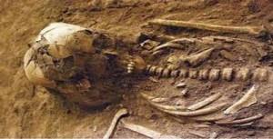 tulang-belulang-manusia