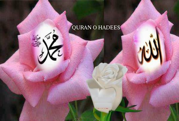 Allah muhammad rose dua