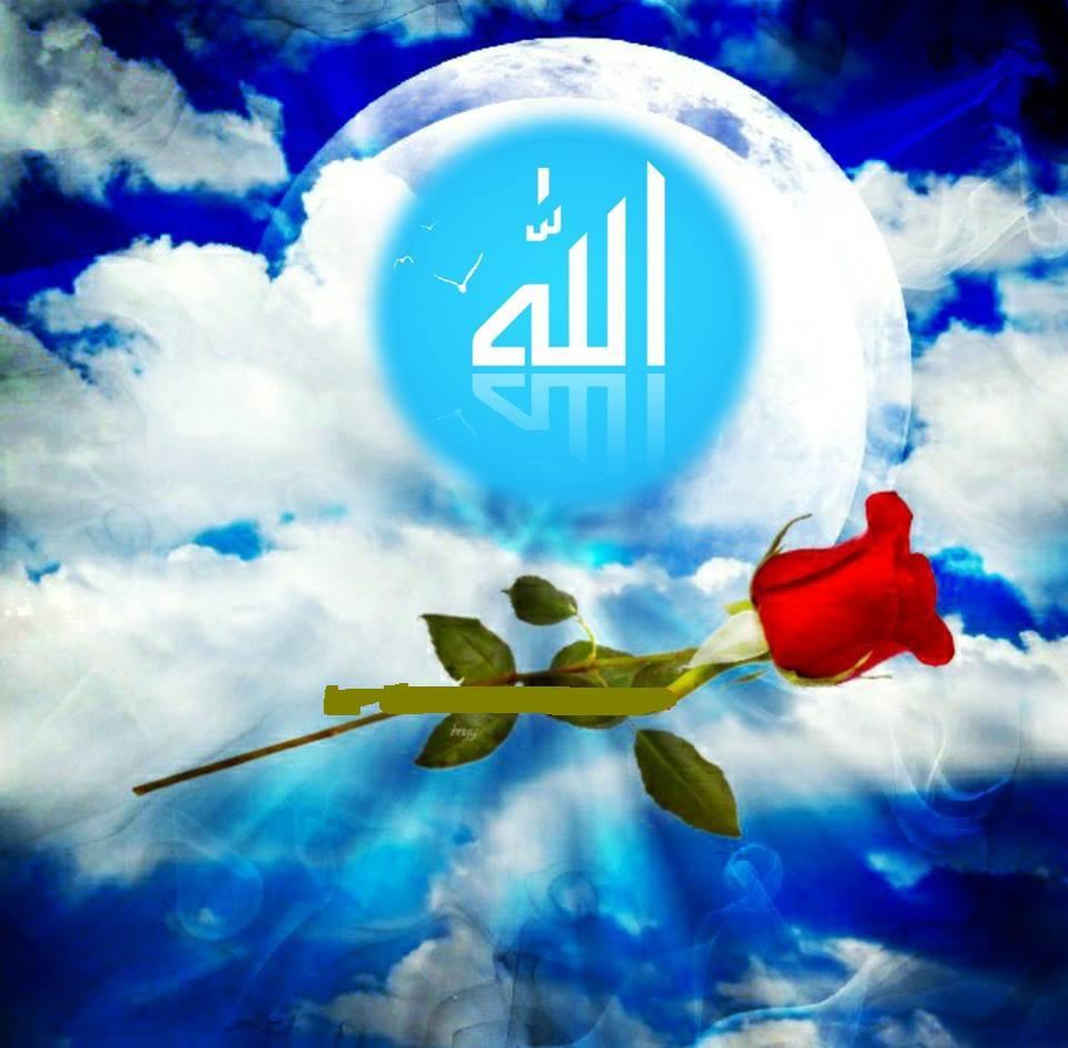 Allah rembulan rose