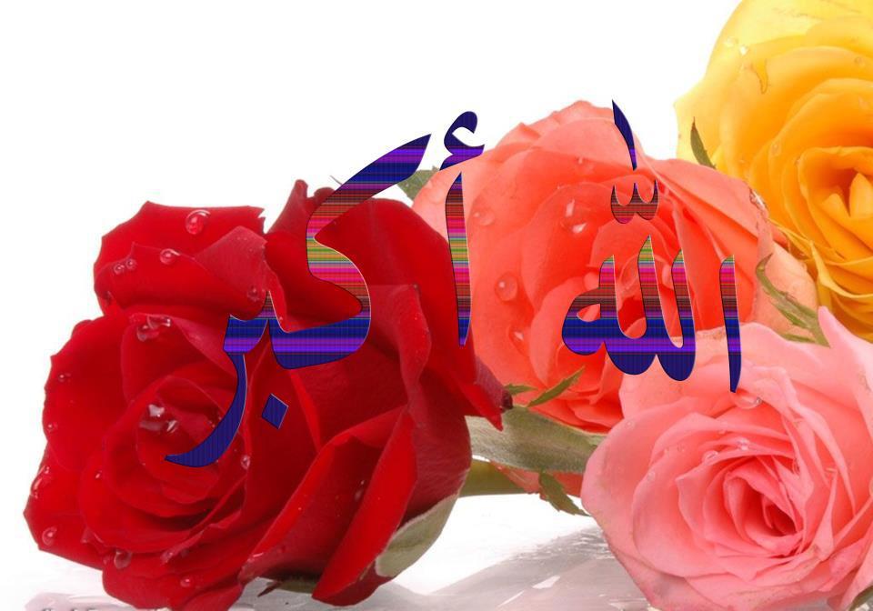 Allah rose warna warna