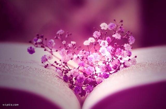 Buku ungu