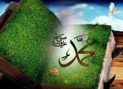 Muhammad buku hijau