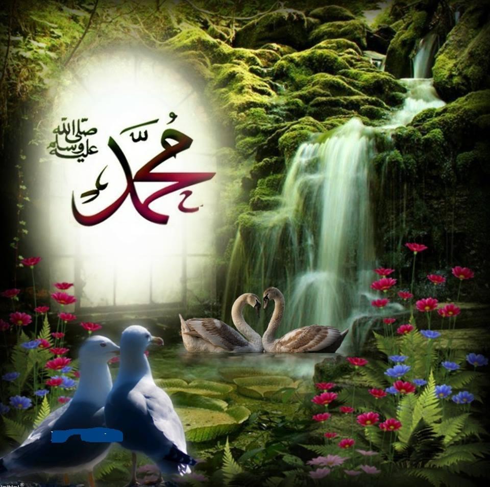 Muhammad air terjun
